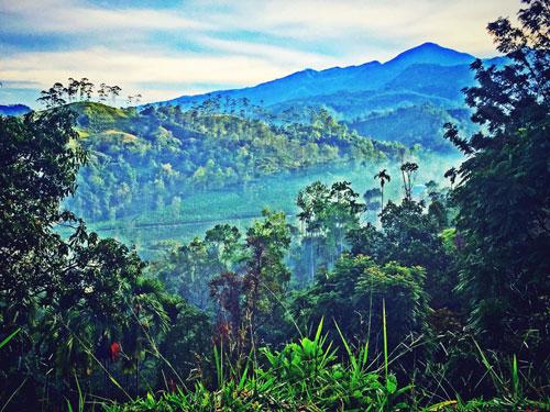 Landscape Ella Sri Lanka