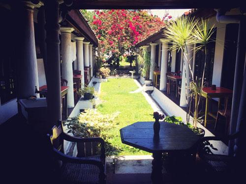 Garden Galle Sri Lanka