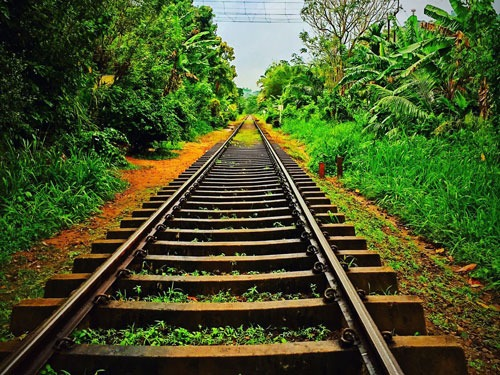 Travel Report Ella Railway Track