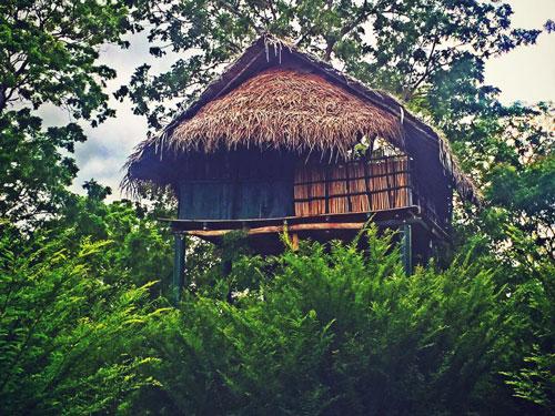 Treehouse Beddegama Ecopark Kataragama