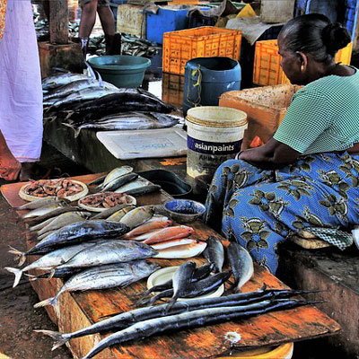 Local Markets in Sri Lanka only accept cash payments