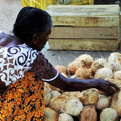 Woman buying coconut in Sri Lanka